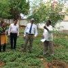 "<p class=""MsoNormal"" style=""margin-bottom: .0001pt; line-height: normal;""><span style=""font-size: 13.0pt; font-family: 'Times New Roman','serif'; mso-ansi-language: EN-US;"" lang=""EN-US"">Honorable Vice-Chancellor, Acharya N. G. Ranga Agricultural University Dr.Vallabhaneni Damodara Naidu garu visited Fish ponds and demo units at Krishi Vigyan Kendra, Nellore </span></p> <p></p> <p class=""MsoNormal"" style=""margin-bottom: .0001pt; line-height: normal;""><span style=""font-size: 13.0pt; font-family: 'Times New Roman','serif'; mso-ansi-language: EN-US;"" lang=""EN-US"">on 25-06-2017</span></p>"