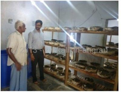 Visit to ARYA Mushroom Unit at Allipuram Village.jpg